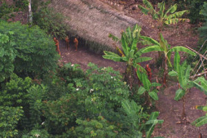 uncontacted-footage-thumb_460_landscape